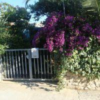 Casa vacanze Sevid 15208, Sevid - Esterno