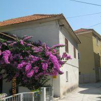 Apartmani i sobe Trogir 16192, Trogir - Eksterijer