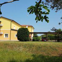 Appartamenti e camere Lovrečica 16543, Lovrečica - Esterno