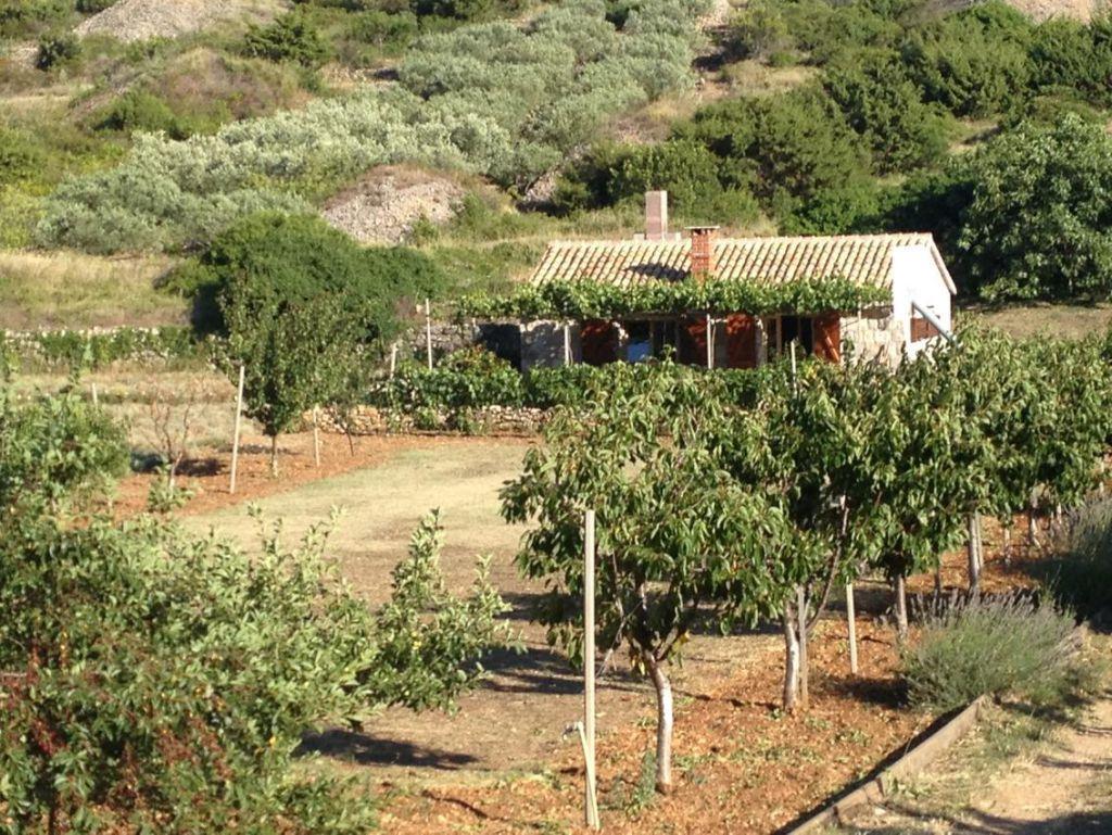Holiday house Podhumlje 16653, Podhumlje - Exterior ...