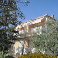Apartmány Zadar - Diklo 16977, Zadar - Diklo - Exteriér