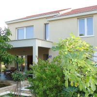 Kuća za odmor Korčula 17600, Korčula - Eksterijer
