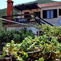 Počitniška hiša Uvala Zaraće 3318, Uvala Zaraća - Zunanjost objekta