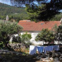 Ferienwohnungen und Zimmer Veli Lošinj 8081, Veli Lošinj - Exterieur