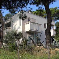 Apartmány Stara Novalja 8768, Stara Novalja - Exteriér